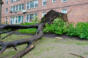 How Schools Plan to Recover from Hurricane Sandy