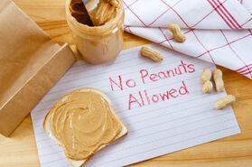 Why Peanuts are Being Banned at Public Schools