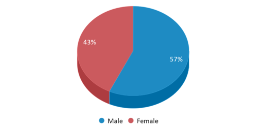 This chart display gender of Nandua Middle School