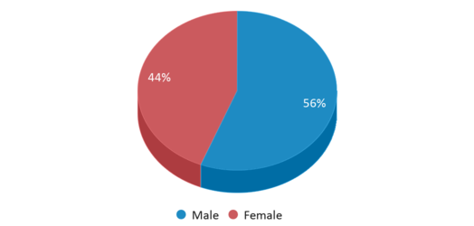 This chart display gender of Three Lakes Academy