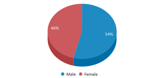 This chart display gender of Winamac Community Middle School