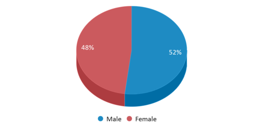 This chart display gender of Guion Creek Middle School