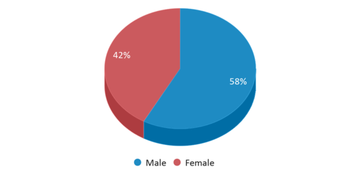 This chart display gender of Gene Scarselli Elementary School