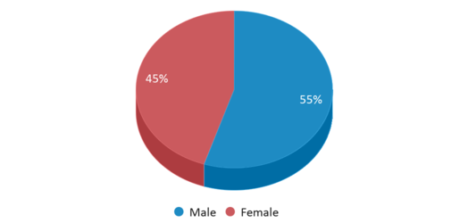 This chart display gender of Bucks County Technical High School