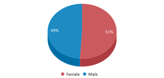 This chart display gender of Mill Creek Elementary School