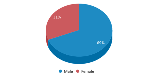 This chart display gender of Spring Creek Colony Elementary - 04