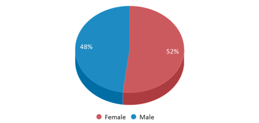 This chart display gender of Mitchell Boulevard Elementary School