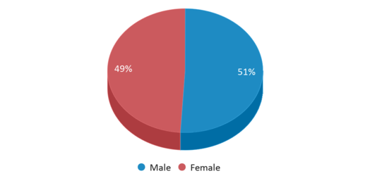This chart display gender of Bellows Free Academy Uhsd #48
