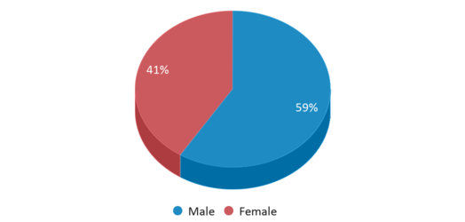 This chart display gender of Pima Vocational High School