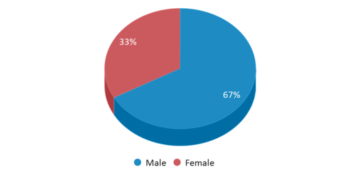 This chart display gender of Slcevergreen