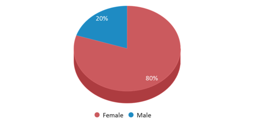 This chart display gender of The Chiles Academy