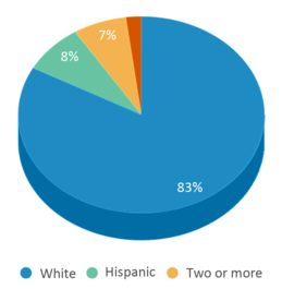 This chart display the percentage breakdown of students of all ethnic groups in Emerson Elementary School.