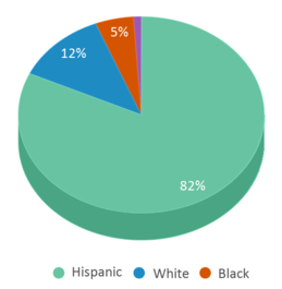 This chart display the percentage breakdown of students of all ethnic groups in Mckinley Elementary School.