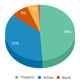 This chart display the percentage breakdown of students of all ethnic groups in West Elementary School.