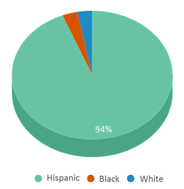This chart display the percentage breakdown of students of all ethnic groups in The Language Academy Of Sacramento.