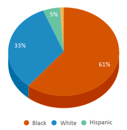 This chart display the percentage breakdown of students of all ethnic groups in Cleveland Academy For Scholarship Technology And Leadership.