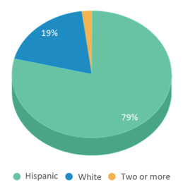 This chart display the percentage breakdown of students of all ethnic groups in Early Childhood Center.
