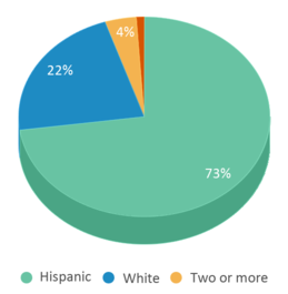 This chart display the percentage breakdown of students of all ethnic groups in Vista Real Charter High School.