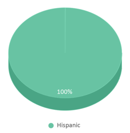 This chart display the percentage breakdown of students of all ethnic groups in Zapata Middle School.