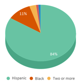This chart display the percentage breakdown of students of all ethnic groups in Greenleaf Elementary School.