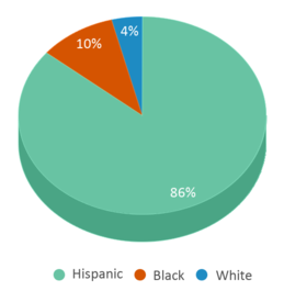 This chart display the percentage breakdown of students of all ethnic groups in Lincoln-marti Schools International Campus.