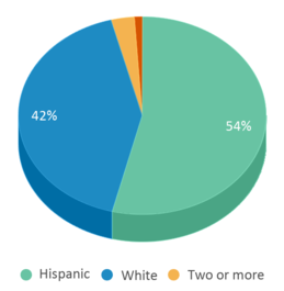 This chart display the percentage breakdown of students of all ethnic groups in Cruhsd Academy.
