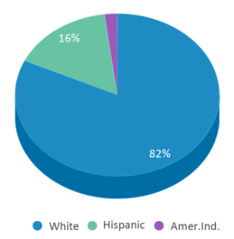 This chart display the percentage breakdown of students of all ethnic groups in Woodrow Wallace Middle School.