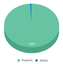 This chart display the percentage breakdown of students of all ethnic groups in Pinecrest Cove Academy.