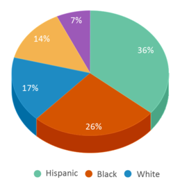 This chart display the percentage breakdown of students of all ethnic groups in Nova Opportunity.