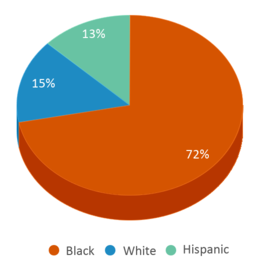 This chart display the percentage breakdown of students of all ethnic groups in Ser Youthbuild High School Academy.