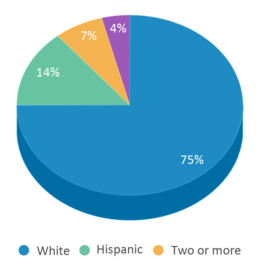 This chart display the percentage breakdown of students of all ethnic groups in Evergreen Institute Of Excellence.
