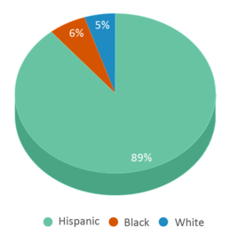 This chart display the percentage breakdown of students of all ethnic groups in Saisd - Pk 4 Sa.
