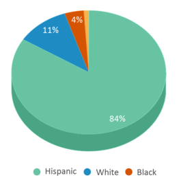 This chart display the percentage breakdown of students of all ethnic groups in Bonham Pre-k School.
