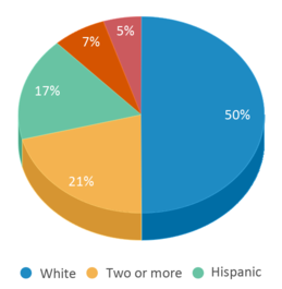 This chart display the percentage breakdown of students of all ethnic groups in Jessie Thackrey Preschool.