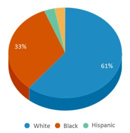 This chart display the percentage breakdown of students of all ethnic groups in Fapsgear Up Academy.