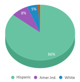This chart display the percentage breakdown of students of all ethnic groups in Aztec High School.