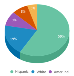 This chart display the percentage breakdown of students of all ethnic groups in International Commerce High School - Tempe.