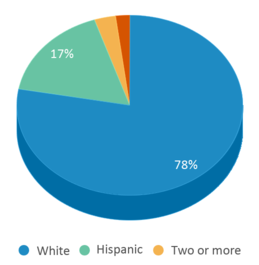 This chart display the percentage breakdown of students of all ethnic groups in Union City Community Jr/sr High School.