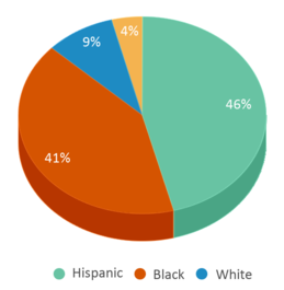 This chart display the percentage breakdown of students of all ethnic groups in Ernie Pyle School 90.