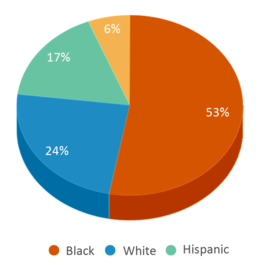 This chart display the percentage breakdown of students of all ethnic groups in Lawrence Central High School.