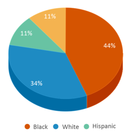 This chart display the percentage breakdown of students of all ethnic groups in Edgewood Elementary School.