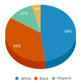 This chart display the percentage breakdown of students of all ethnic groups in Juvenile Justice Center.