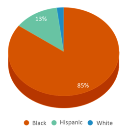This chart display the percentage breakdown of students of all ethnic groups in Forest Park High School.
