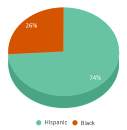 This chart display the percentage breakdown of students of all ethnic groups in Beacon Heights Elementary School.