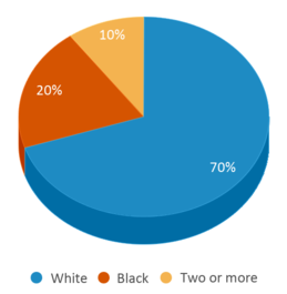 This chart display the percentage breakdown of students of all ethnic groups in Access.