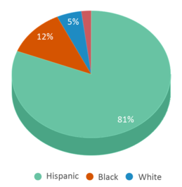 This chart display the percentage breakdown of students of all ethnic groups in Freshman Center.