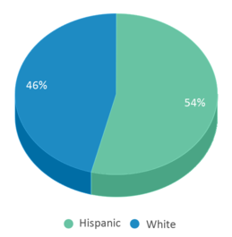 This chart display the percentage breakdown of students of all ethnic groups in Texhoma High School.