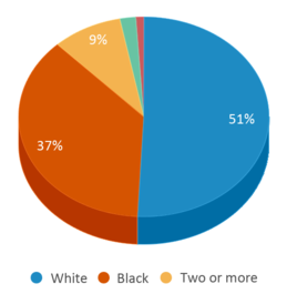 This chart display the percentage breakdown of students of all ethnic groups in Pendleton Elementary School.
