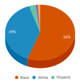 This chart display the percentage breakdown of students of all ethnic groups in Ruffin Middle School.