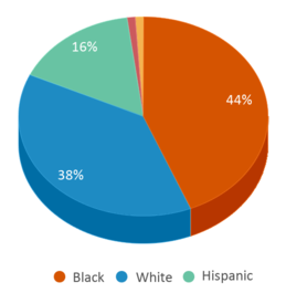 This chart display the percentage breakdown of students of all ethnic groups in Brewer Middle School.